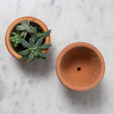 little terra cotta pots