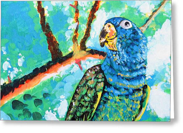 Parrot - Greeting Card