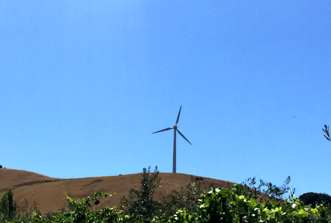An windmill located on the hill at McEvoy Ranch