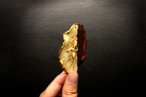 A side view of a thin dehydrated green apple slice dipped with dark chocolate