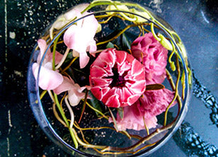 A fishbowl with a protea, lisianthus, orchids and willow.