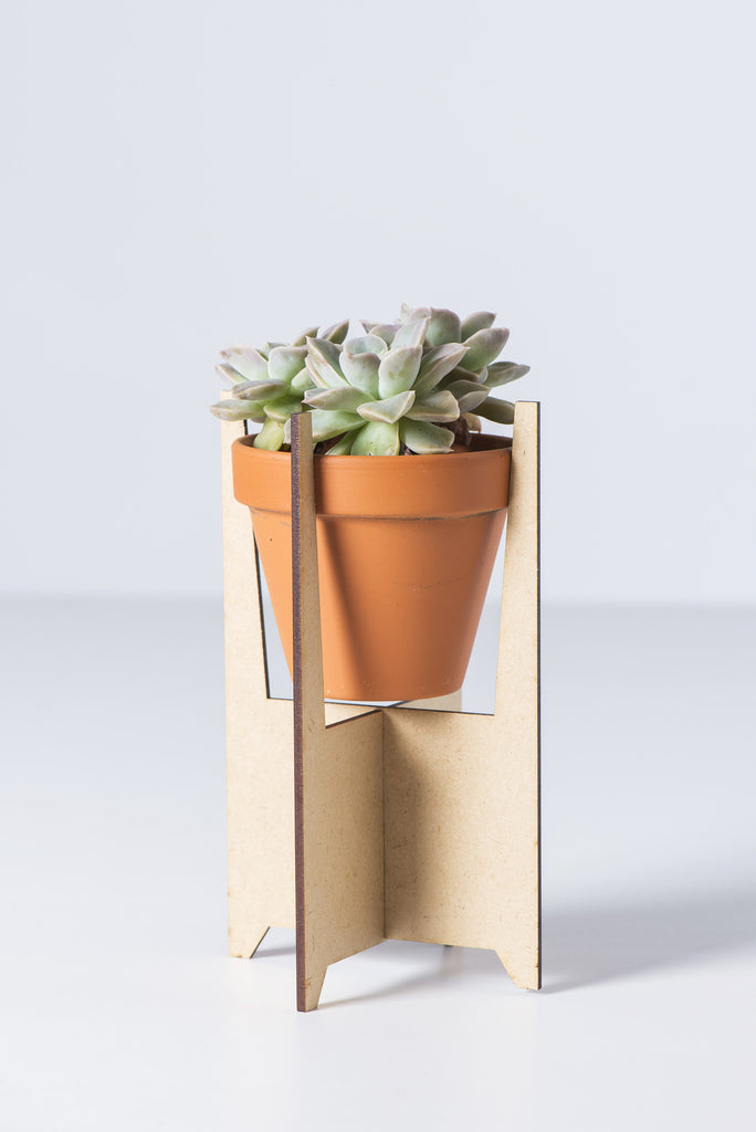 Swagger Collective: Solid Leg Planter