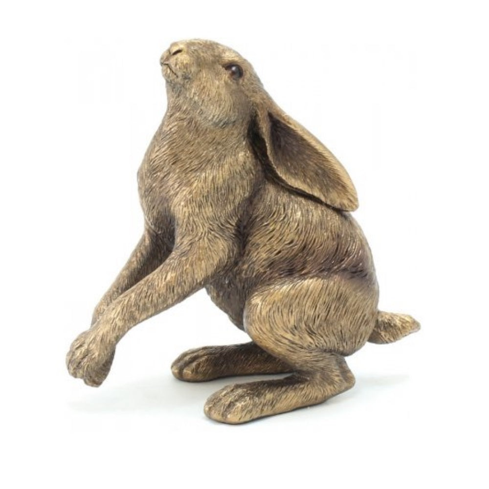 Bronze Sky Gazing Hare Ornament - Seashore No4