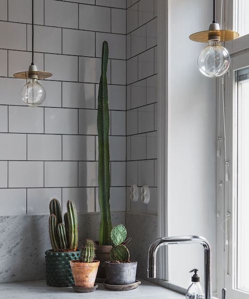 "Cactus Envy: Your Guide To Decorating The Home With This New ""It"" Plant"
