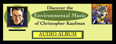 ENVIRONMENTAL MUSIC OF CHRISTOPHER KAUFMAN