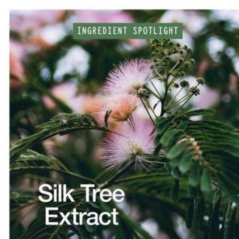 Ingredient Image: Silk Tree Extract