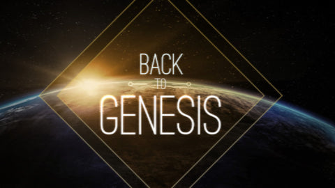 Back to Genesis: 4-Week Series