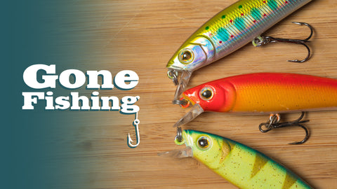 Gone Fishing: 4-Week Series