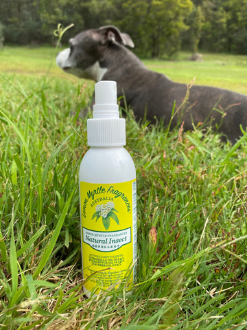 All our bug repellents are APVMA approved and safe to use around kids and pets