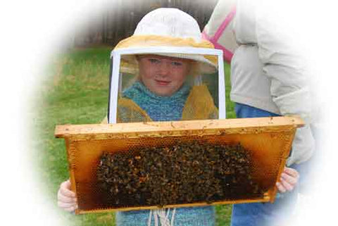 Junior Beekeeper at BUMBA