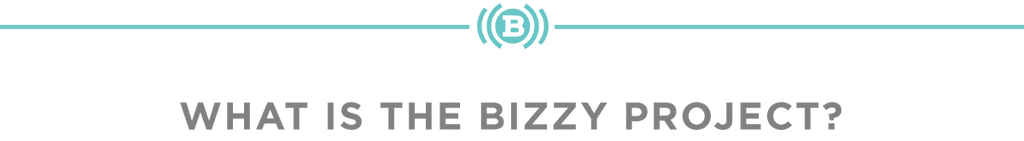 What is the Bizzy Project?
