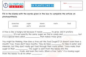 Class 4 Science worksheets CBSE - Plants