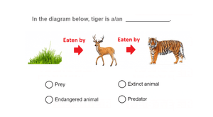 Science Olympiad Class 4 mock test on animals - 02