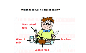 Class 4 Science Olympiad Sample papers on Food and Digestion - Online test 02