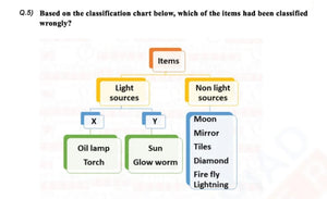 Class 6 Science Light Shadow and Reflections worksheet