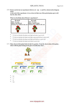 CBSE Science Class 2 Sample papers on Plants - Set 01 (05 Worksheets)