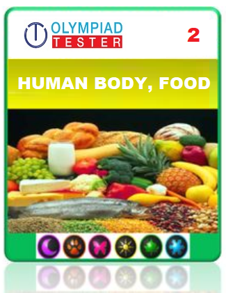 OLYMPIADTESTER CERTIFIED STUDENT EXAM (OCS) - CLASS 2 SCIENCE - HUMAN BODY AND FOOD - Olympiad