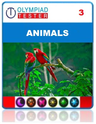 OLYMPIADTESTER CERTIFIED STUDENT EXAM (OCS) - CLASS 3 SCIENCE - ANIMALS - Olympiadtester
