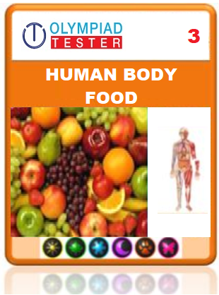 OLYMPIADTESTER CERTIFIED STUDENT EXAM (OCS) - CLASS 3 SCIENCE - HUMAN BODY AND FOOD - Olympiad
