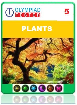 OLYMPIADTESTER CERTIFIED STUDENT EXAM (OCS) - CLASS 5 SCIENCE - PLANTS - Olympiad
