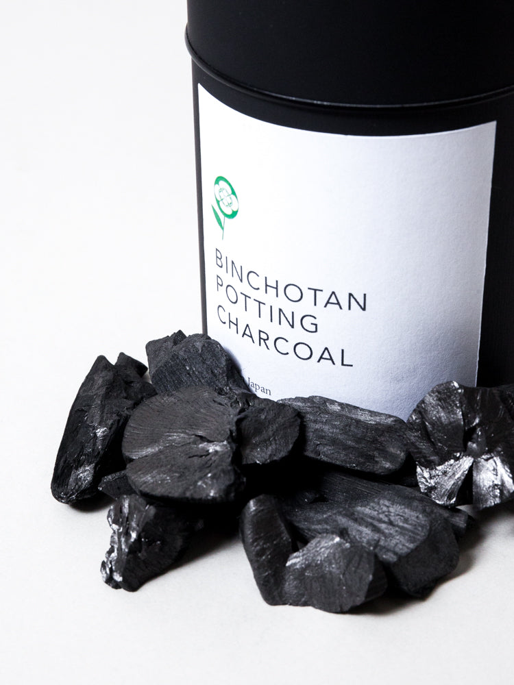 Binchotan Potting Charcoal