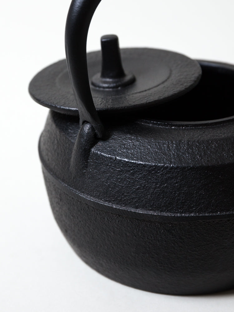 Iwachu Cast Iron Tea Kettle