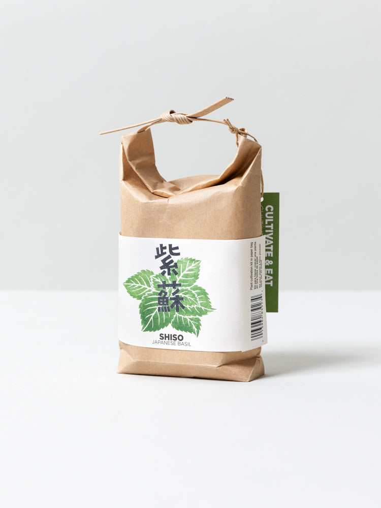 Cultivate & Eat Planting Set - Shiso Japanese Basil