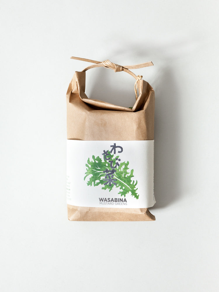 Cultivate & Eat Planting Set - Wasabina Mustard Greens