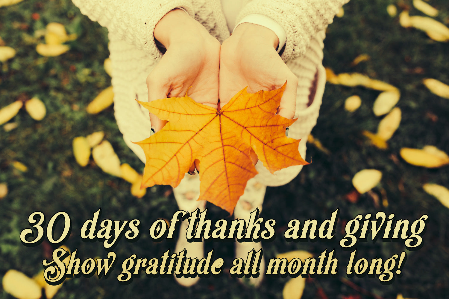 30 days of thanks and giving