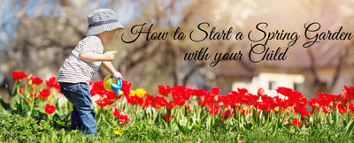 Starting a Garden with Your Toddler