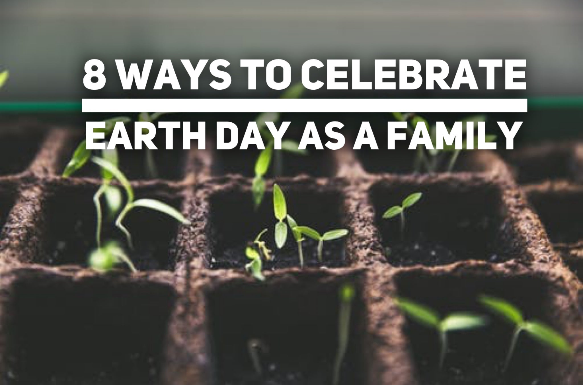 8 Ways to Celebrate Earth Day as a Family