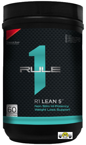 R1 Lean 5 by Rule 1 Proteins