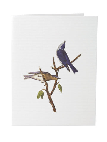 Blank greeting card stationery with blue bird theme