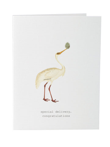 Special Delivery New Baby Congratulations Greeting Card on Blank Stationery
