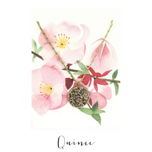 IN THE GARDEN | Quince Necklace