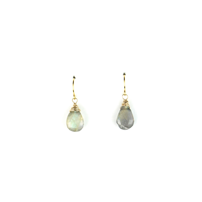 PANTONE Labradorite Earrings