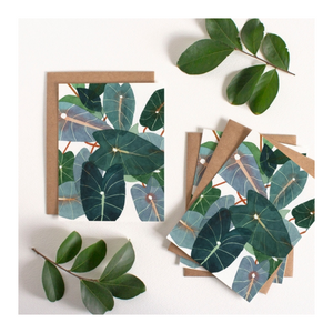 CARD SET | Caladiums