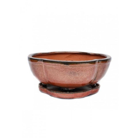 "Glazed Rounded Ceramic Bonsai Pot 8"" (Earth Variations)"
