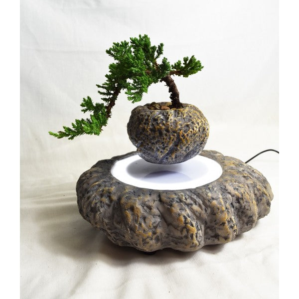 NATURAL ROCK LEVITATING PLANTER