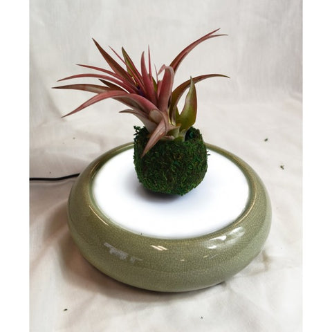 PALE GREEN CERAMIC LEVITATING PLANTER
