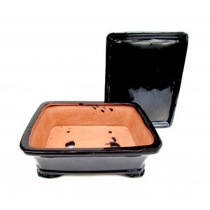 "Rectangular Ceramic Glazed Bonsai Pot 8"" Black"