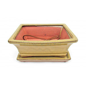 "Rectangular Ceramic Glazed Bonsai Pot 8"" (Olive Variation)"