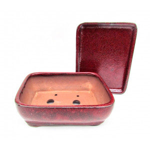 "6"" Red Hues Rounded Rectangular Bonsai Pot"