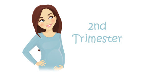 Pregnancy Checklist Second Trimester Lullaby Earth Blog
