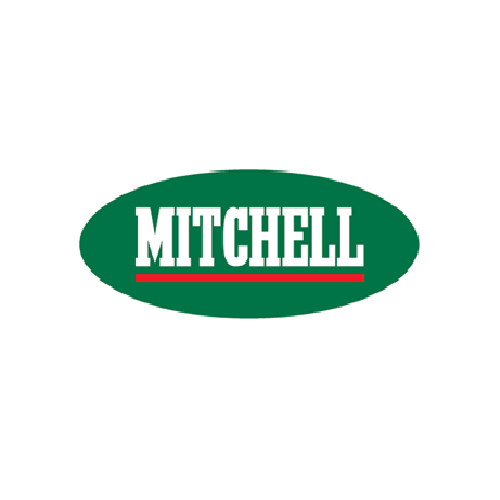 Mitchell Casting Reels