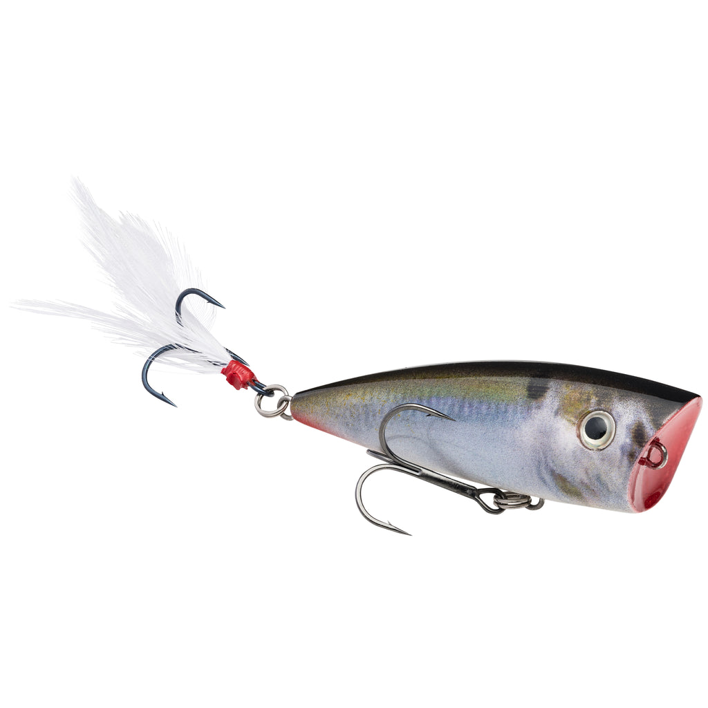 Strike King KVD Splash Topwater Popper Jr