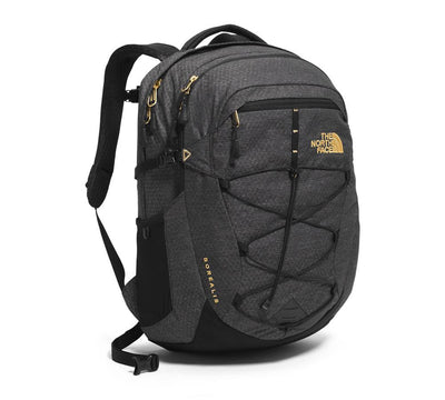 TNF Black/24K Gold