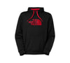 The North Face Surgent Pullover Hoodie - Men's