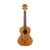 Kala Pacific Walnut Tenor KA-PWT