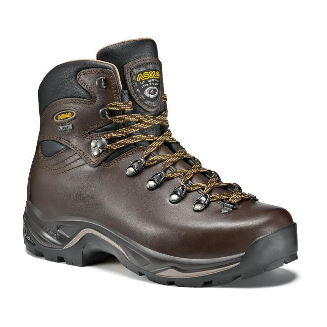 Asolo TPS 520 GV Evo Hiking Boots - Women's